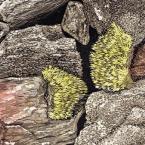 Rock Pile, detail: artwork by Rebecca Gilbert