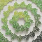 Tumbleweed, wood engraving, weed, shadowbox, works on paper, work on paper, printmaking, contemporary art, contemporary printmaking, Rebecca Gilbert, wreath