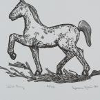 Rebecca Gilbert, Wild Pony
