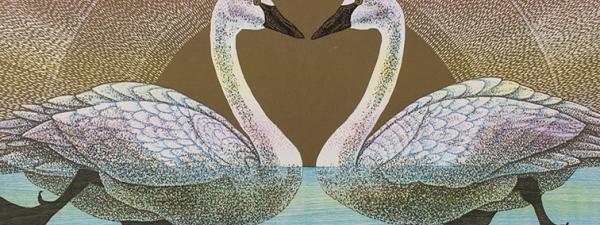 Memento Mori Swans Rebecca Gilbert